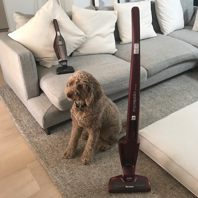 #cantlivewithout: 10 reasons why we love OUR NEW CORDLESS VACUUM